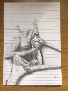 3D art f an orangutan sitting in a tree eating a coconut. Pencil drawing on line illusion.