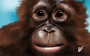 Orangutan digital art created by author and illustrator or Sid Smart - the children's book about health and nutrition.